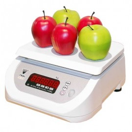 PORTION SCALE ELECTRONIC
