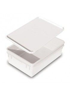 STORAGE CONTAINER WITH LID  LARGE  PLASTIC